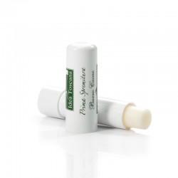 Stick Labbra all'olio d'oliva